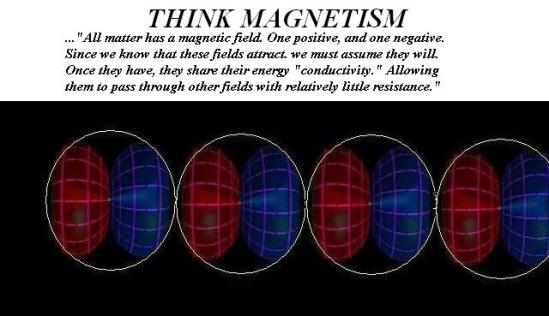 Think Magnetism 3